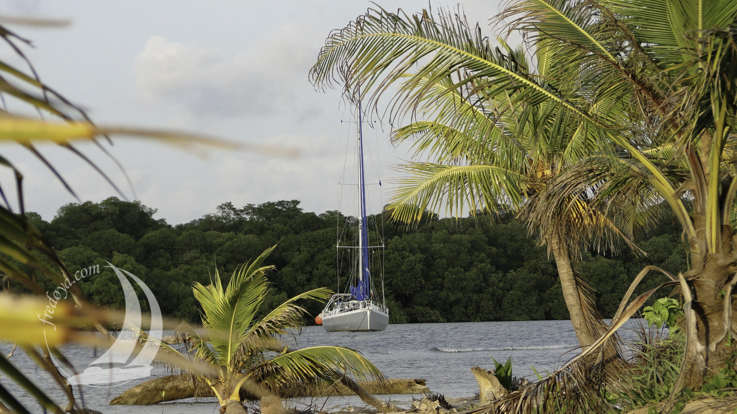 Panama, Puerto Escribano June to December 2011