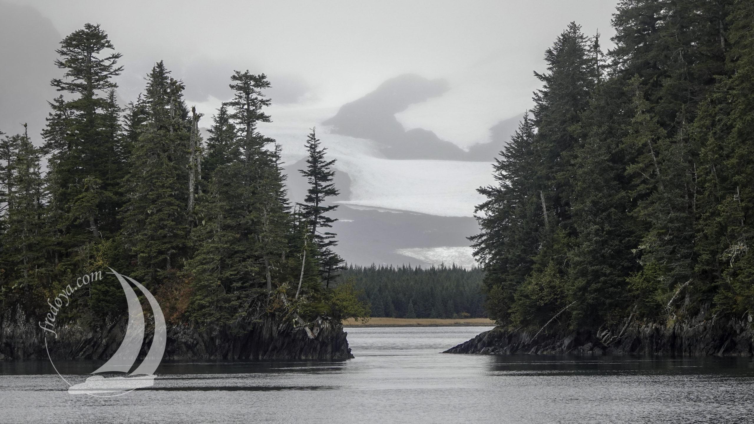 Alaska - Péninsule Kenai