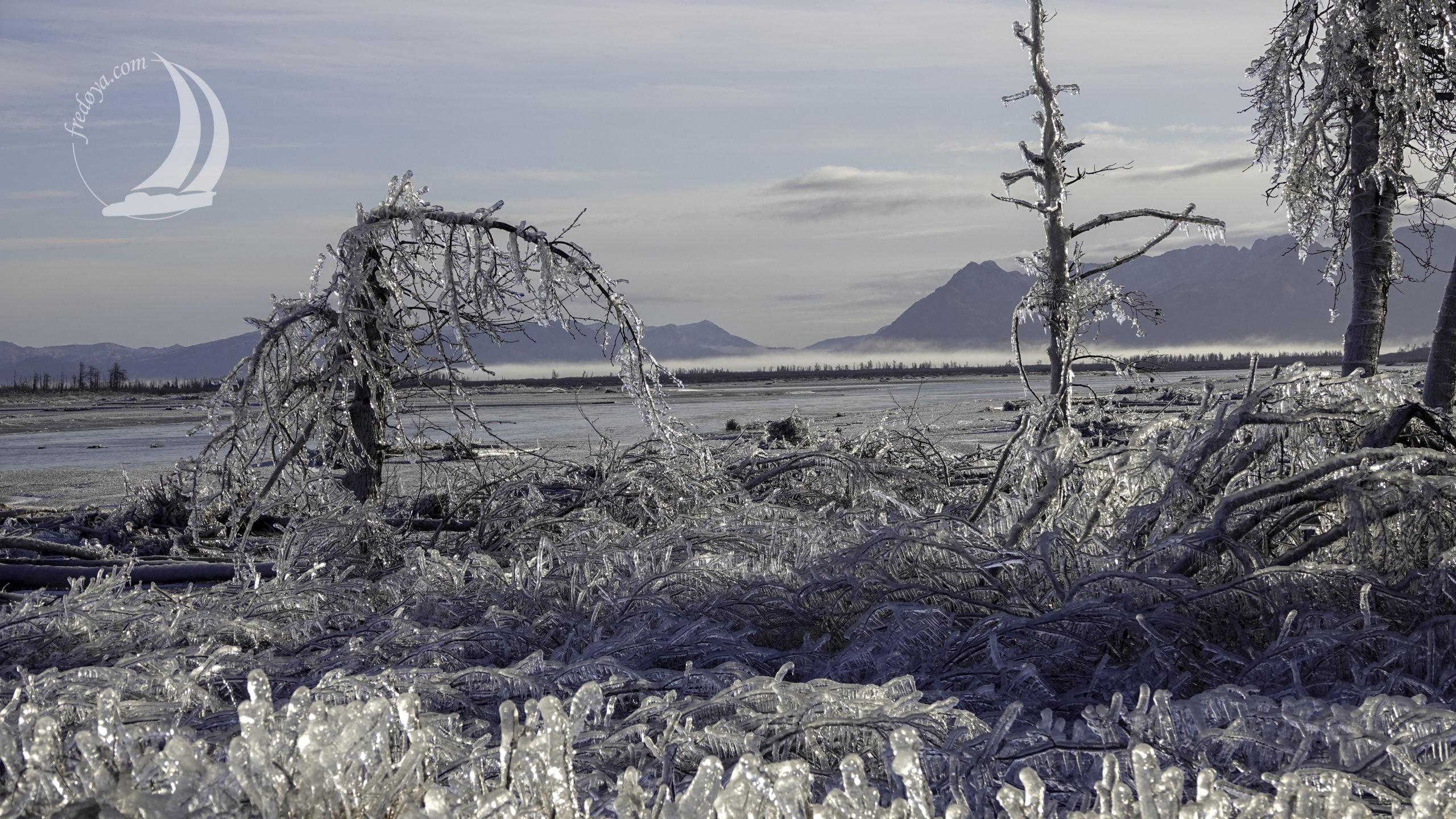 Alaska - Prince William Sound - Cordova  Delta de Cooper river